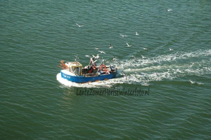Vissersbootje IJmuiden