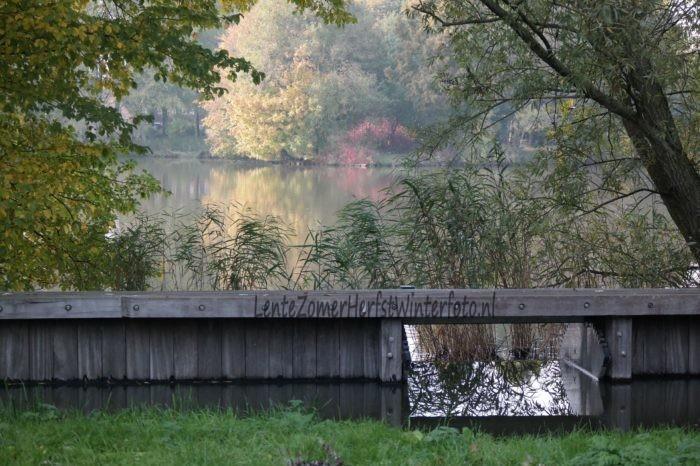 Herfst-foto-dam
