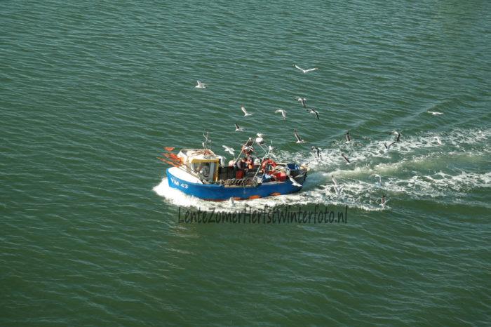 IJmuiden Vissersbootje